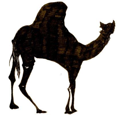 駱駝さん 顔正面