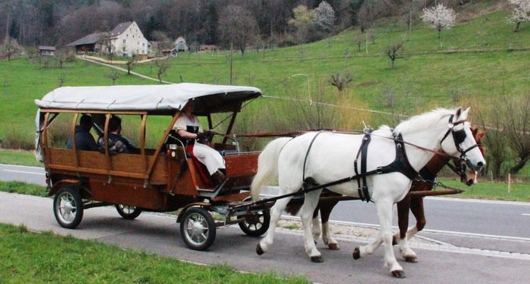 Im Gesellschaftswagen durch Reigoldswil