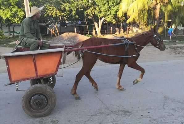 Wanderferien Kuba - auch das macht unseren deutsc he Reiseleitung Kuba