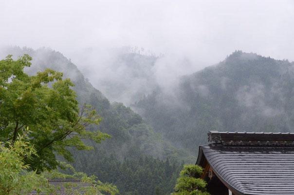 山より湧き出る霧