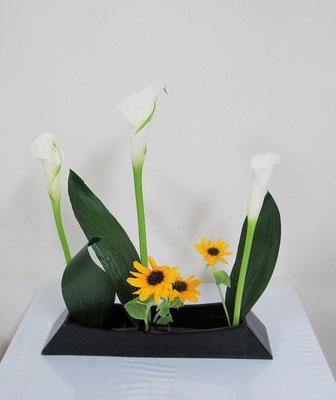2020.10.21 <カラー 向日葵(ヒマワリ) ハラン> Ittsuちゃんの作品です。ならぶかたちはIttsuちゃんの大好きな花型です。