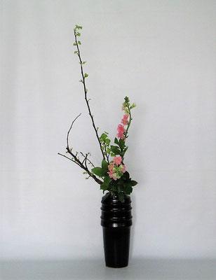 2021.2.2 <金葉こでまり スナップドラゴン 丸葉ルスカス> 金葉こでまりは、早春のライム色の小さい葉がとても美しく好きな枝のひとつです。Tamikoさんの作品です。