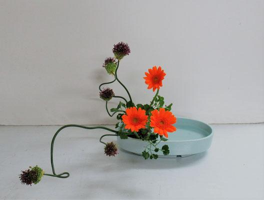2019.6.19 <丹頂アリウム ガーベラ ポリシャス> Rikuくんの作品です。丹頂アリウムのくねくねとした曲がりは動きがあり、Rikuくんのお気に入りの花材だそうです。