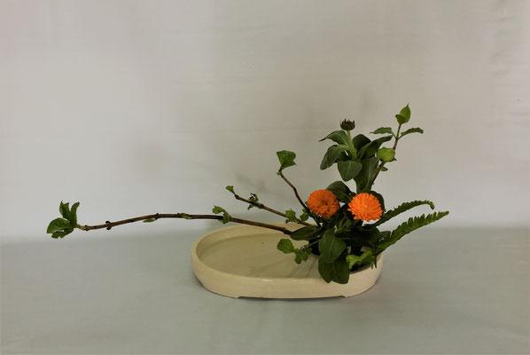 <芽出し紫陽花 金盞花(キンセンカ) 玉シダ> Tamikoさんの作品です。