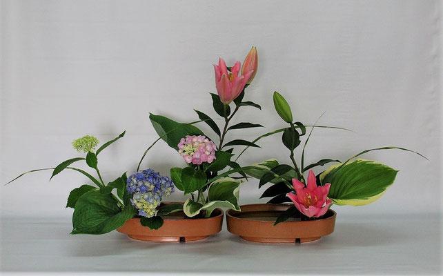 2020.7.21 <オリエンタルリリー 紫陽花(アジサイ) 矢羽根薄 擬宝珠(ギボウシ)二種> Tamikoさんの作品です。琳派調いけばなのお稽古です。