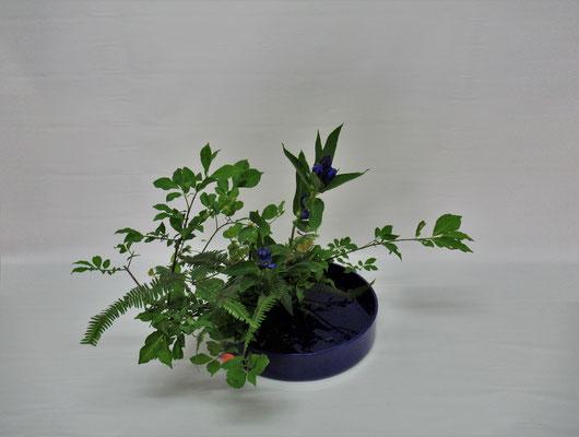 2019.8.20 <真弓(マユミ) 竜胆(リンドウ) 山シダ> Atsukoさんの作品です。お花屋さんによると大振りの山シダは沖縄産だそうです。