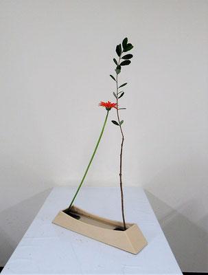2020.11.25 <フェイジョア ガーベラ> Rikuの作品です。初めて『花舞』のお稽古をしました。