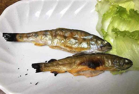 山女(ヤマメ)と岩魚(イワナ)はシンプルに塩焼きでいただきました。美味しかったです。