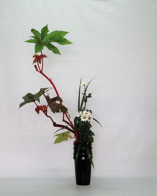 2020.11.10 <唐胡麻 小菊 著莪> Kumikoさんの作品です。水揚げした後のトウゴマの葉をパキッと広げて。