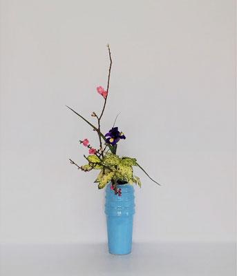 4/10 <桃 ダッチアイリス ゴッドセフィアナ> Tamikoさんの作品です。