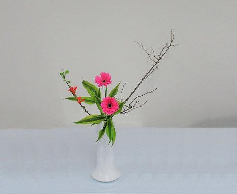2020.2.26 <木瓜(ボケ) ガーベラ ドラセナサンデリアーナ> Rikuくんの作品です。
