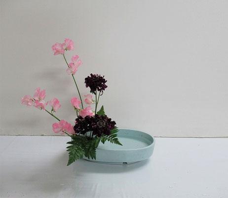 2020.2.26 <スイートピー スカビオサ レザーファン> Akikoさんの作品です。花ものによる直立型。