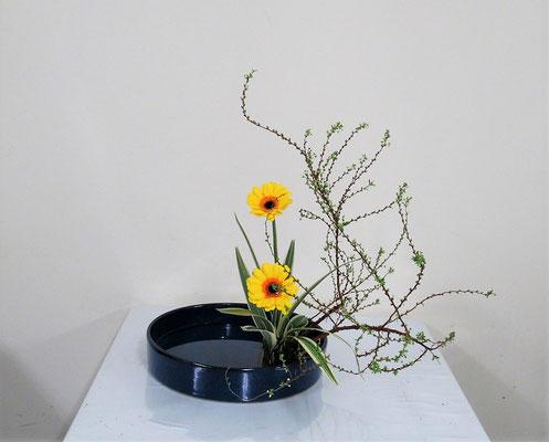 2021.2.10 <雪柳(ユキヤナギ) ガーベラ キキョウラン> Katsurakoさんの作品です。春の明るい盛花です。水もきれい!