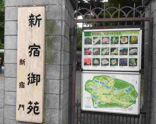 新宿御苑 新宿門入口です。