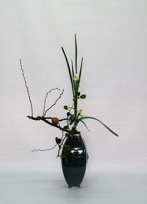 2020.12.8 <実木瓜 水仙> Tamikoさんの作品です。ひとつしか生らなかった貴重な木瓜の実を活かした一作です。