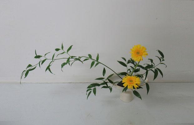 2019.9.11 <笹葉ルスカス ガーベラ> Rikuくんの作品です。研究会のお稽古です。かたむけるかたち。