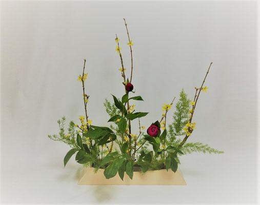 <連翹 芍薬 アスパラガス・スプレンゲリー>  Kayoさんの作品です。 久しぶりのお稽古ですが、植物の勢いを感じます。