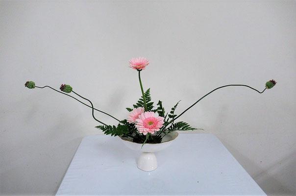 2021.4.7 <丹頂アリウム ガーベラ レザーファン> Ittsuちゃんの作品です。 アリウムのくねくねした茎の姿や花の向きを見ながら丁寧にいけました。
