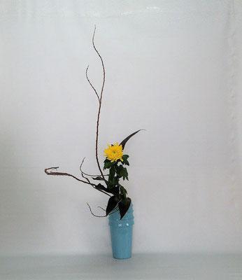 2021.1.19 <石化柳(セッカヤナギ) 中菊 青ドラセナ> Tamikoさんの作品です。