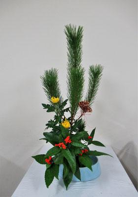 2020.12.30 <若松 菊 千両> Ruriさんの作品です。初めていけるお正月の祝い花です。