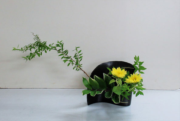 2019.6.12 <雪柳 向日葵 鳴子百合> Qianさんの作品です。かたむけるかたちを変形花器で。