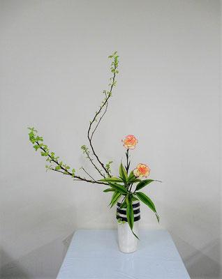 2020.3.11 <金葉コデマリ カーネーション ドラセナ・サンデリアーナ> Akikoさんの作品です。