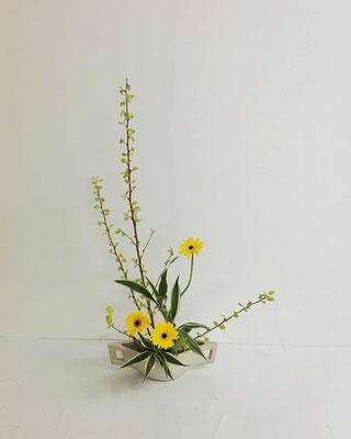 <金葉こでまり ガーベラ ドラセナ・サンデリアーナ> Yukiさんさんの作品です。