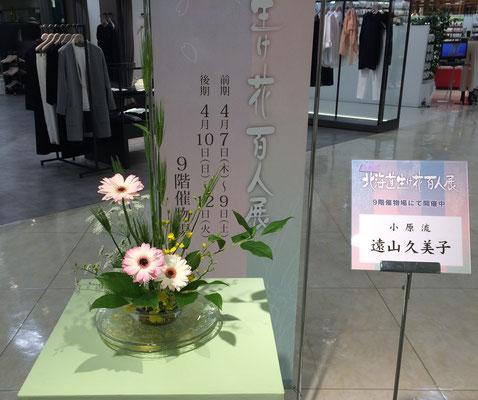 2016.4.7~12 第57回北海道生け花百人展 さっぽろ東急百貨店の4階に展示された飾り花。Kumikoさんの作品です。