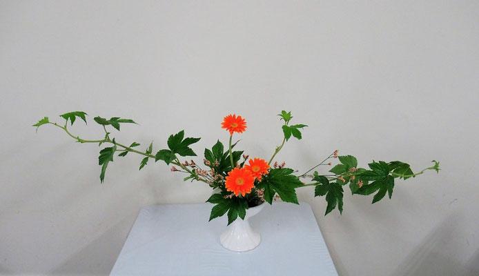 2020.6.10 <木苺 ガーベラ ハイブリッドチース> Katsurakoさんの作品です。