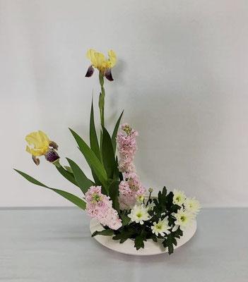 6/5<ジャーマンアイリス ストック スプレー菊> Tamikoさんの作品です。ジャーマンアイリスをイチハツに見立てて様式本位、色彩盛花のお稽古です。