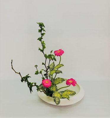 <芽出し木苺 ガーベラ ゴッドセフィアナ> Tamikoさんの作品です。
