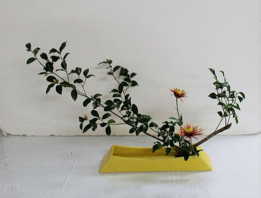 2020.11.18 <山茶花(サザンカ) 菊 著莪(シャガ)> Rikakoさんの作品です。お花屋さんから届いた花材は主材となる枝が山茶花でした。かたむけるかたちのお稽古です。北海道では、あまり見かけることはありませんが、本州では路地などに11月くらいから普通に咲いている花です。