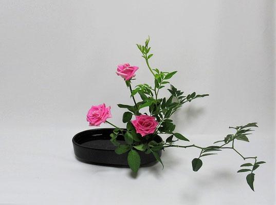 2020.9.19 <素馨(ソケイ) 薔薇(バラ)> Kayoさんの作品です。研究会の課題をお稽古しました。
