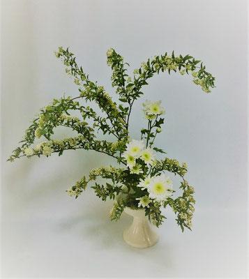 <こでまり スプレー菊> Yosiさんの作品です。