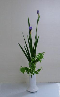 2020.5.27 <花菖蒲(ハナショウブ) 梅花空木(バイカウツギ)> Katsurakoさんの作品です。花菖蒲は初めての花材でした。とても素敵に仕上がりました。