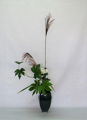 2020.9.29 <薄 小菊 木苺> Kumikoさんの作品です。取合せの花材を見て野の情景が浮かび、皹寧窯の花瓶にいけてみました。