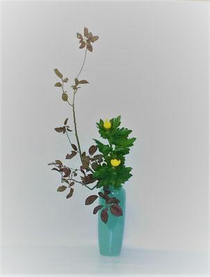 <紅李(ベニスモモ 夏菊)> 夏菊の葉付きがよく、生気ある濃い緑の葉の重量感も感じられたので二種でいけ上げたそうです。ベニスモモと菊のそれぞれ重なる葉を丁寧に整理することに注意していけました。Kumikoさんの作品です。