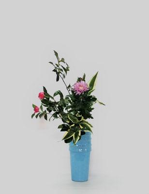 2018.11.6 <山茶花 菊 ドラセナ・サンデリアーナ> Tamikoさんの作品です。