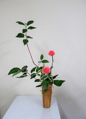 2020.9.9 <珊瑚水木(サンゴミズキ) カーネーション ドラセナサンデリアーナ> Atsukoさんの作品です。
