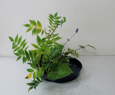 2020.7.15 <ナナカマド ラベンダー 擬宝珠(ギボウシ) スモークツリー> Atsukoさんの作品です。庭に咲いていたラベンダーを野の花に見立てて写景盛花のお稽古をしました。
