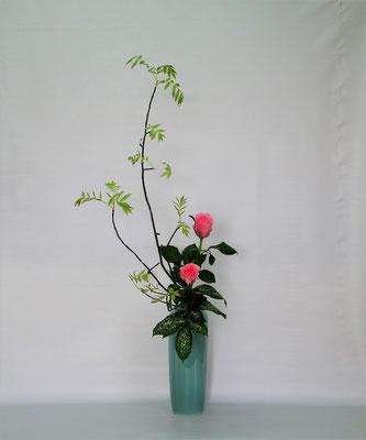 2019.4.30 <ナナカマド バラ ゴッドセフィアナ> Kumikoさんの作品です。