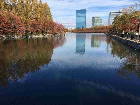 11/24 研修の翌日、空港へ向かう前に大阪城公園へ向かいました。外堀の水面が鏡のようになって。