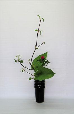 2021.6.1 <虫狩 薊(アザミ) 擬宝珠(ギボウシ)> Kumikoさんの作品です。