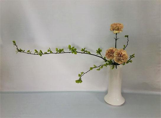 6/5<蔓梅擬 カーネーション> Hirokoさんの作品です。かたむけるかたちを瓶花で。