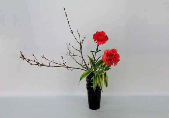 2019.5.21 <オタルモミジ カーネーション ドラセナ・サンデリアーナ> Tamikoさんの作品です。