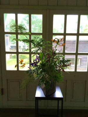 旧北海中学校の正面玄関を入った途端に目に飛び込んできた展示花は、夏の木立を吹き抜ける風を感じました。