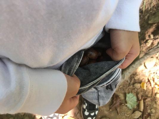 正体はポケットにいっぱい詰め込んだドングリ。