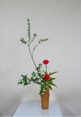 2020.3.18 <コデマリ カーネーション ドラセナ・サンデリアーナ> Atsukoさんの作品です。