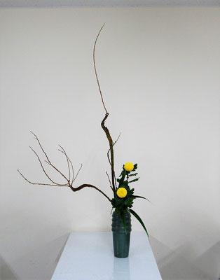 2020.11.25 <石化柳(セッカヤナギ) ピンポン菊 著莪(シャガ)> Katsurakoさんの作品です。瓶花・直立型のお稽古です。