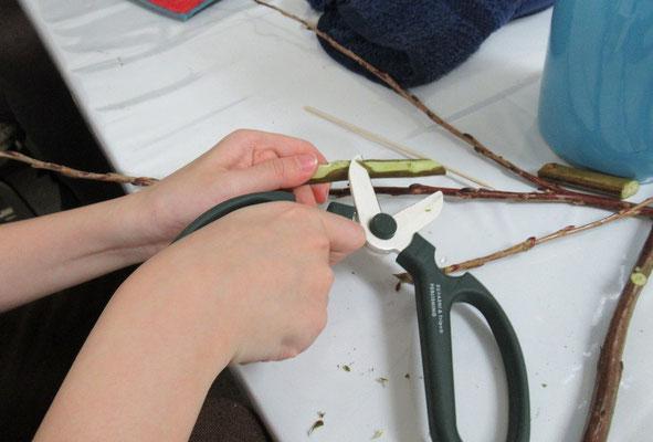 花バサミは、色々な使い方ができます。枝の留め木を作っているRikuくんです。